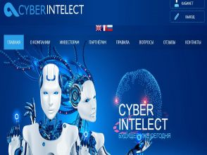 CYBER INTELECT